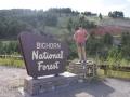 bighorn-nf-christy