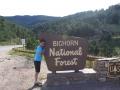bighorn-nf-mark