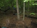 Campsite on Knobstone Trail
