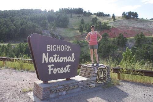Bighorn NF Christy
