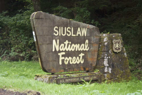 Siuslaw NF