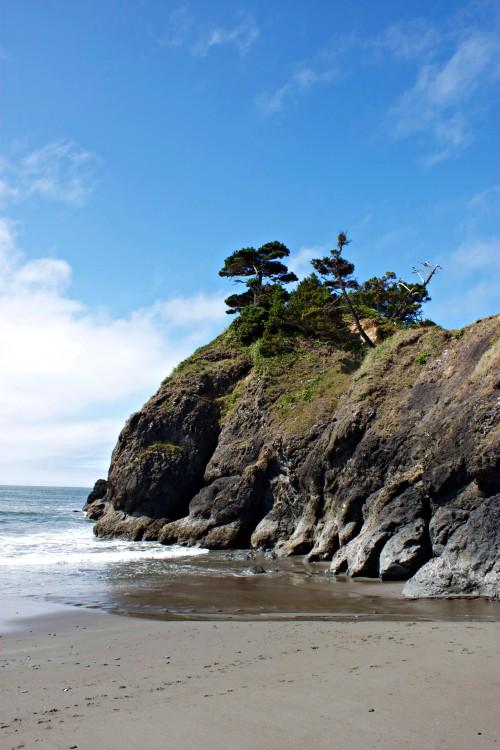 beach walk in Oregon