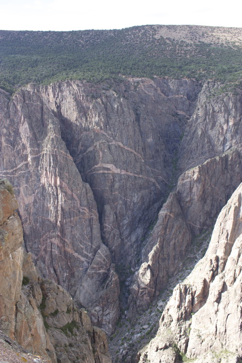 Canyon of the Gunnison