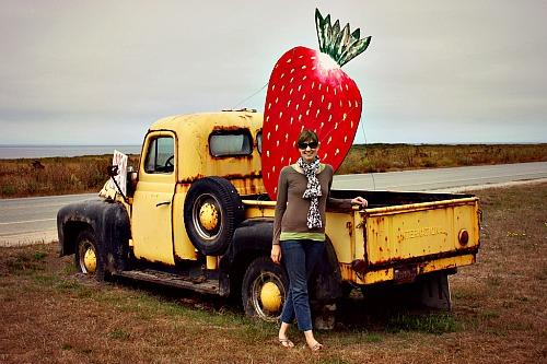 Swanson Berry Farm