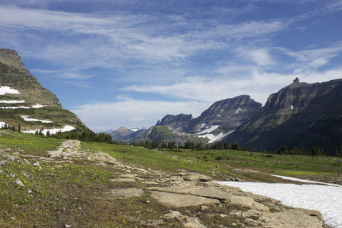 Hidden Lake Trail Glacier National Park