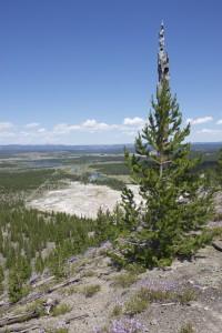 Grand prismatic overlook hike