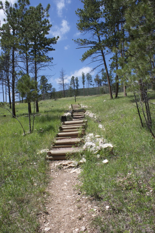 steps in canyons trail