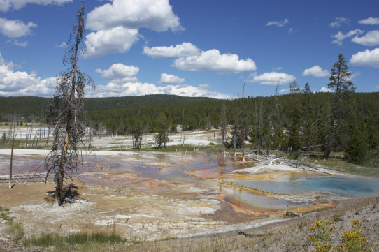 Firehole Lake Pools