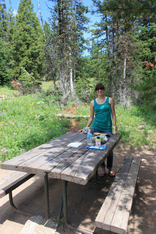 Yellowstone Picnic Lunch