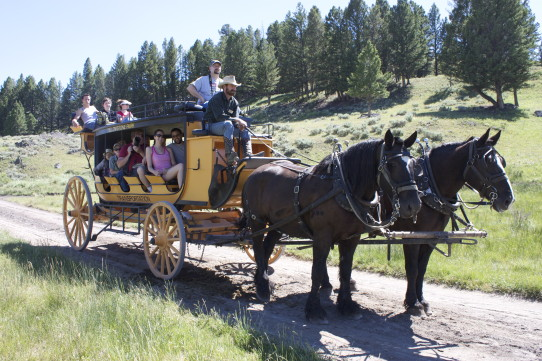 Yellowstone Stagecoach Ride