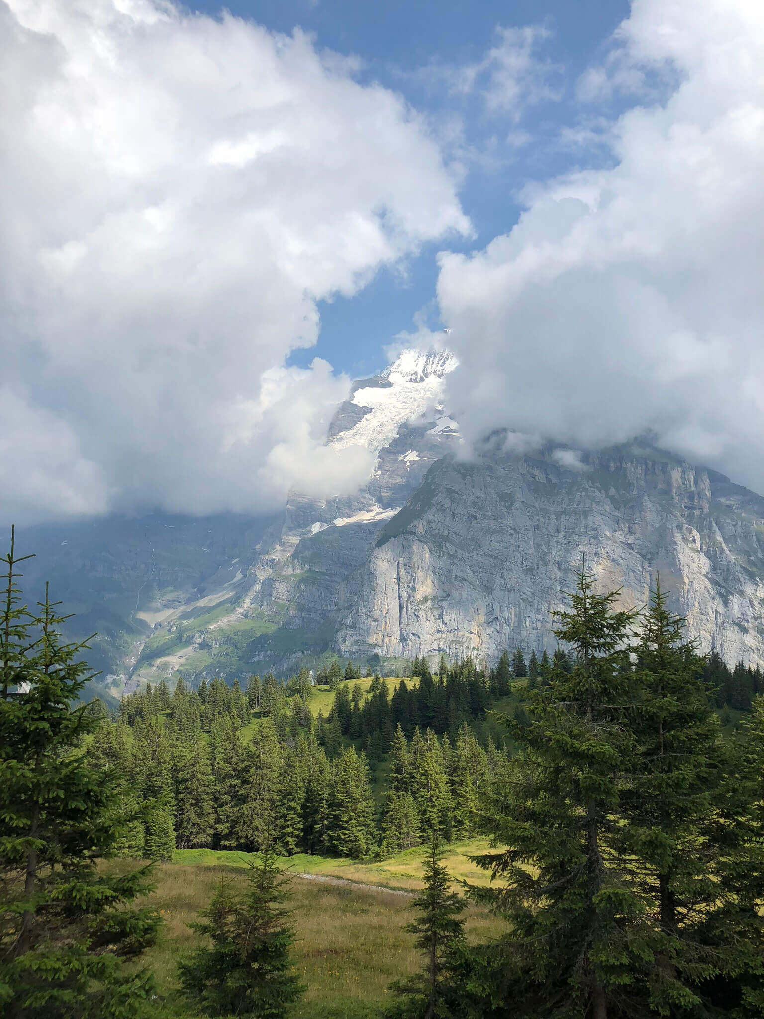 Mountain View Hike Murren